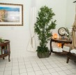 home-gallery-img2